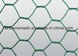Плетение цыплятины PVC/сетка цыпленка/шестиугольная ячеистая сеть