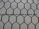 Engranzamento de fio do PVC/rede sextavados revestidos com preço do competidor
