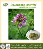 Extrait de luzerne 100% naturel: saponines 5% -50% 10: 1; 20: 1 (N ° CAS: 84082-36-0)