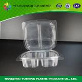 Freier Plastiknahrungsmittelbehälter mit Teiler/Plastikablagekästen/Nahrungsmittelbehälter