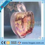 Fabrikanten die de Acryl Aangegane Moderne Bol van de Sneeuw van de Omlijstingen van de Appel van het Kristal Plastic verkopen