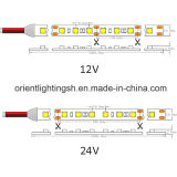 UL SMD 5050 60LEDs/M, IP66.12V, striscia del LED