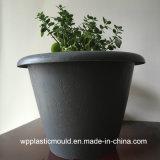 Blätter kopieren ringsum PlastikFlowerpot für Garten-Ausgangsdekoration (HP-06)