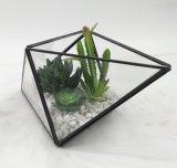 Le Terrarium artificiel en métal de noir de décoration plante le Succulent