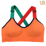 Signora professionale Sports Bra