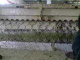 Huhn-Maschendraht/sechseckige Draht-Filetarbeit