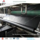 HDPE material Geomembrane impermeable de la charca de pescados