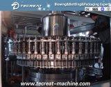 Máquina del relleno en caliente de la botella del animal doméstico de las bebidas de leche del té