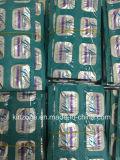 Lida che dimagrisce i prodotti di perdita di peso, Lida che dimagrisce capsula