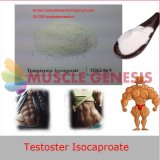 Testostérone liquide Isocaproate de fioles de stéroïdes injectables pour le hypogonadisme mâle (essai I)