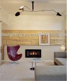 창조적인 디자인은 거실 분지 3 삼각 철 오리 샹들리에를 꾸민다