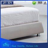 튼튼하고와 편리한에 새로운 형식 침대