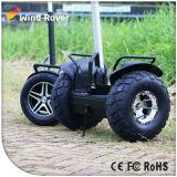 Auto elettrico di potere del vagone per il trasporto dei lingotti 2000W Hipe del motociclo che equilibra motorino elettrico