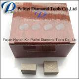 Pulifei 1600mm 세그먼트 절단기 공작 기계 화강암 다이아몬드 세그먼트