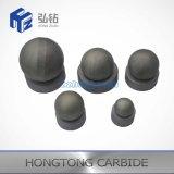 Desgaste - espaços em branco resistentes do assento de Ball& do carboneto de tungstênio