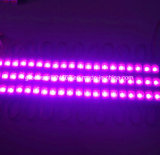 Rosafarbene LED-Bildschirmanzeige-Beleuchtung-Baugruppe