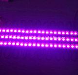 Módulo de iluminación LED de color rosa