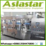 Sistema automático personalizado da embalagem do frasco da máquina de enchimento da água