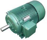 Моторы высокой эффективности двойной скорости Yd/Y2d/Ye2d трехфазные (IE1 IE2 IE3)