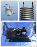 Kleines kondensierendes Gerät Gleichstrom-12V mit Minikühlraum-Kompressor und Koaxialwärmetauscher für Verkauf