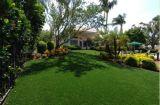 Ajardinando la hierba artificial del jardín del monofilamento (L40-R)