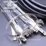 Tipo ataduras de cables de la escala del acero inoxidable