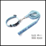 Light Blue 2ply Ensembles de collier de chien et de fils