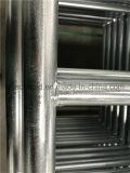 Galvanisierte StahlRinglock Baugerüst-Strichleiter mit innerem VerbindungPin
