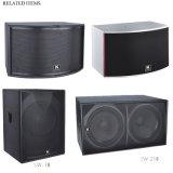 "900w 136dB Dual 18 ""Speaker Subwoofer para Disco (SW-218)"