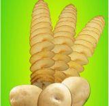 Manueller verdrehter Kartoffel-Schneidmaschine-Spirale-Gemüse-Scherblock