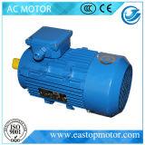 Мотор госпожи AC для металлургии с ротором Алюмини-Штанги