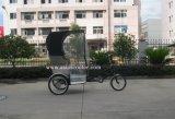 Pedal de la promoción y carrito eléctrico con la cubierta del tiempo (VS-T301E)