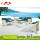 Ganascia esterna della mobilia Chair/Rattan del rattan (DH-608)