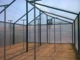 Netto anti-insect Gemaakt van High-Density Polyethyleneg voor Serre