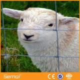 Гальванизированная фабрика проволочной изгороди овец сразу