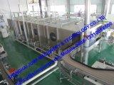 Máquina & equipamentos em escala reduzida da produção da pasta de tomate