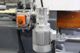 機械のためのガラス端の磨く機械