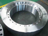 Flange do forjamento do grande diâmetro (300-6500mm)