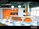 Welbom 높은 광택 현대 부엌 가구 모듈 래커 부엌 찬장