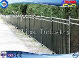 Rete fissa d'acciaio saldata galvanizzata per obbligazione (SF-003)