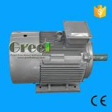 Безщеточный трехфазный генератор магнита AC перманентности