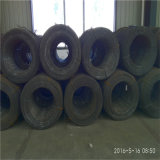 Galvanized SAE 1006b/1008b/1010b Steel Wire 중국 Origin 높 힘 Ms
