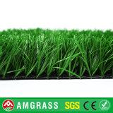 Hoog - het Gras van Astro van het Voetbal van de dichtheid/van de Voetbal Dtex/Gazon/Kunstmatig Gras