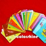 Conjunto del libro de la tarjeta del juego de niños del cartón