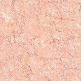 De opgepoetste Tegel van het Porselein: Rode Steen Shaanna