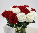 Flor artificial grande de Rosa de 3 cabeças da flor artificial