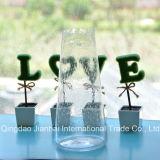 Самомоднейшая домашняя декоративная ваза цветка стеклянной бутылки цветастая