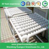 熱い販売はボックスHydroponics装置の温室を育てる