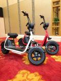 Projeto novo com patente, Moped elétrico