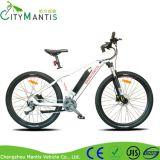 リチウム電池式の電気マウンテンバイク